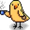 sparrow-