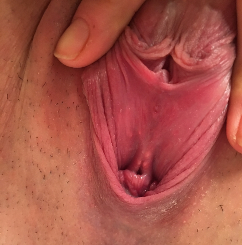 inside of the pussy lips