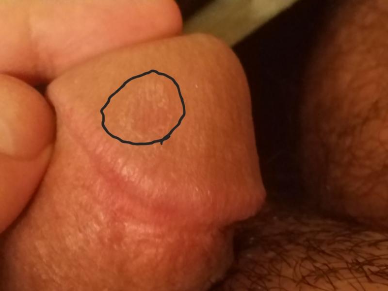 Wet puffy labia lips masturbation