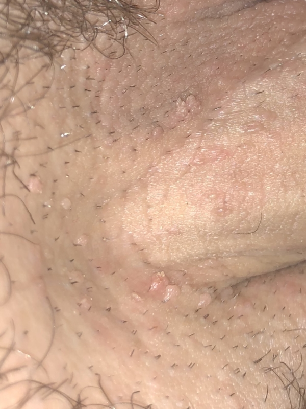 Nude shaved pussy fucked sex video