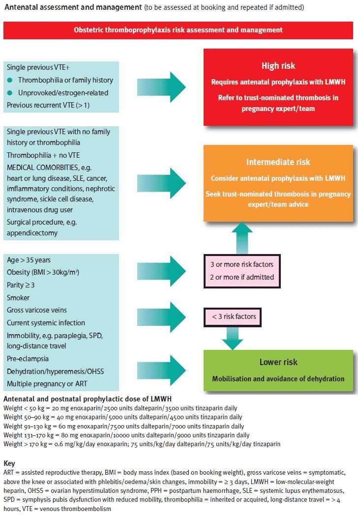 Antenatal thromboprophylaxis RCOG GT37