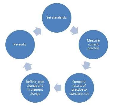 Audit cycle diagram