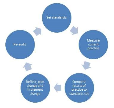 Audit cycle diagram