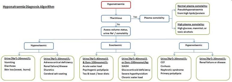 HypoNa flowchart