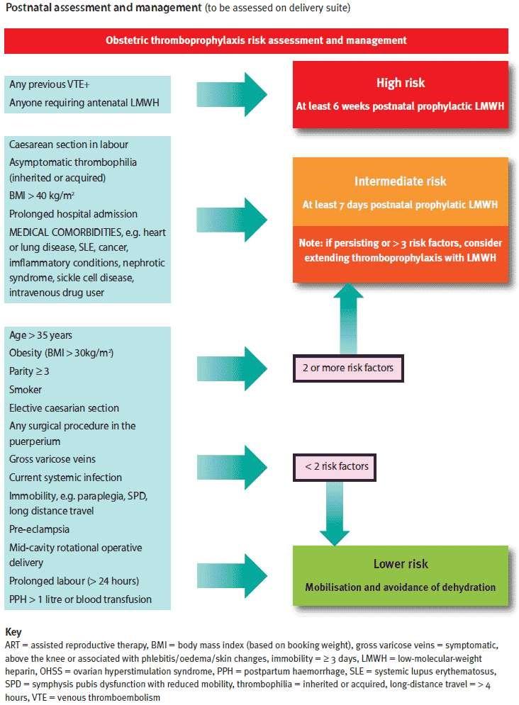 Postnatal thromboprophylaxis RCOG GT37