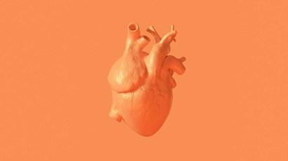 Artificial intelligence could detect irregular heartbeats